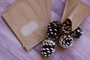 DIY Pinecone Ornament Favors