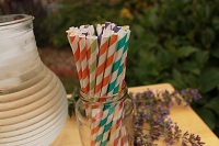 Paper Straws and Organic Cocktails for Cooler Weather Part 2:Winter