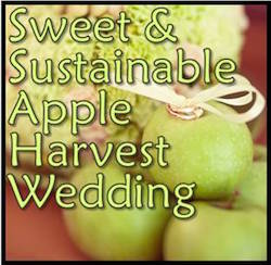 Sweet & Sustainable Apple Harvest Wedding