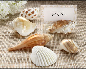 """Shells by the Sea"" Authentic Shell Place Card Holders with Matching Placecards (Set of 6)"