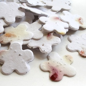 Five Petal Plantable Confetti - Petalled - 350 Pieces
