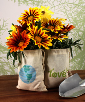 ECO Mini Drawstring Bag made of 100% Organic Cotton - Set of 12 - as low as $17.98